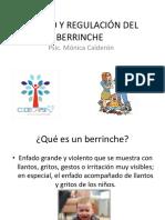 Manejo y Regulación Del Berrinche