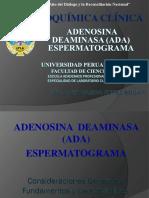 ADA - Espermatograma