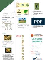 Animalesvertebradostriptico 111112085528 Phpapp02 (1)