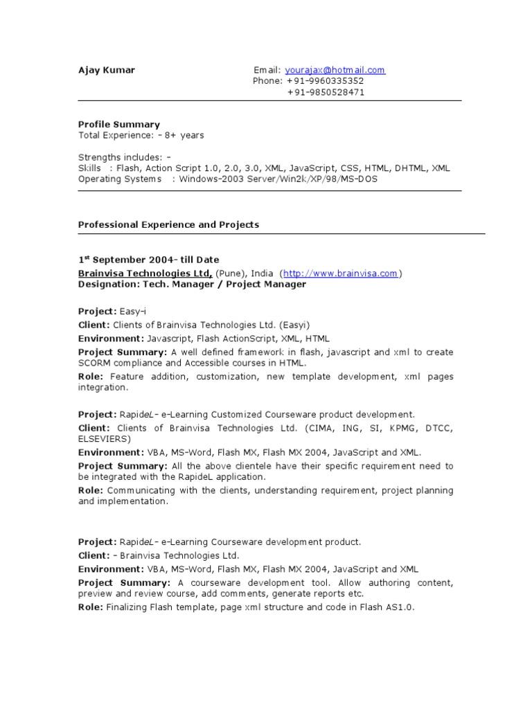 8,3] | Java Script | Adobe Flash