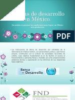 Bancas de Desarrollo MEXICO