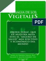 """La Magia de Los Vegetales PDF Demo Capitulo 8 """"La Miel de Abejas, Jalea Real y Polen"""""""
