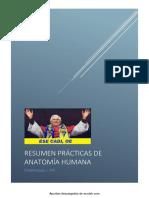 1. Resumen prácticas Anatomía F URJC