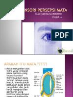 Sensori Persepsi Mata