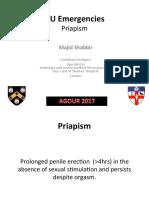 GU Emergencies Priapism