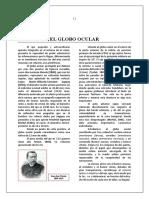 Anatomia Ojo Perea Estrabismo-12-28