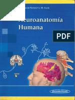 Neuroanatomia Humana Porrero