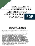 PARTES DE LA ATM Y  FUNCIONAMIENTO DE LA