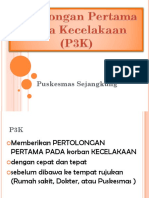 133772983-penyuluhan-dokcil-p3k.pptx