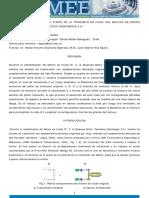Analisis_Falla_Piñon_Molino.pdf