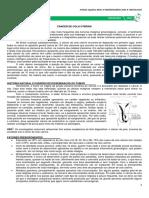 03 - Câncer de Colo de Útero.pdf