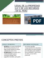 SITUACIÓN LEGAL DE LA PROPIEDAD DEL SUBSUELO Y el aprovechamiento de los recursos naturales.pptx