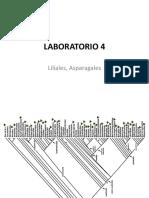 Lab 4