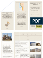 INCA pdf.pdf