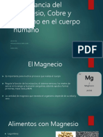 Importancia Del Magnesio Cobre y Carbono En el cuerpo