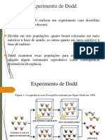 Experimento de Dodd