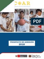 4.- Prospecto COAR 2018.pdf