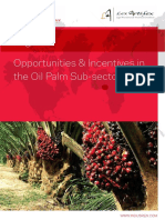 Nigeria's Oil Palm Sector - The Opportunities and Incentives