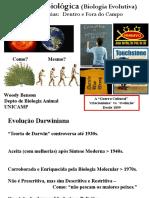 aula Benson.pdf