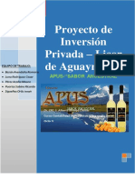Proyecto de Inversion de Licor de Aguaymanto