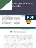 Presentacion Icf Rurales-2