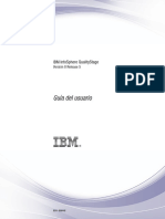 IBM Data Quality