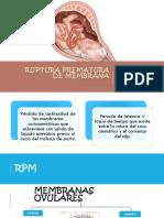 RPM-Y-APP