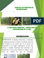 diapositivas-reforestacion