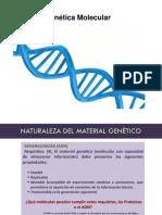 Genética.ppt