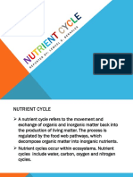 Nutrient-cycle.pptx