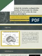 Toxicidad de metales y plaguicidas utilizando el bioensayo de células espermáticas con erizo de mar Arbacia spatuligera