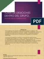 Toma de Desiciones Dentro Del Grupo, Analisis de Las Alternativas