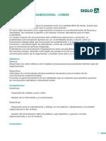 Programa_materia -Comunicación Organizacional - Com202