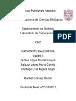 Capacidad_calorifica.docx