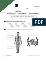 Natural - Circulatory System.pdf