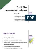 Credit Risk Management in Banks