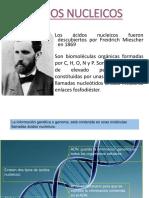 Acidosnucleicos Clase 1