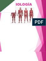 Miologia Anatomia