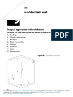 hernia-abd wall.pdf
