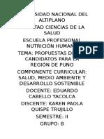 Universidad Nacional Del Altiplano - Investidgacion Segunda