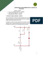 Preinforme Instrumentacion N.1