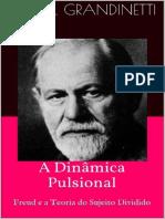 A Dinamica Pulsional - Freud e a Teoria Do Sujeito Dividido - Daniel Grandinetti
