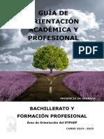 Guía de Orientación Académica y Profesional_Bachillerato y FP_Granada.pdf