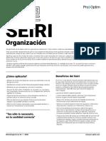 5S Manual Completo