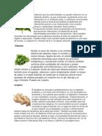 10 Plantas Medicinales y para qué sirven.docx