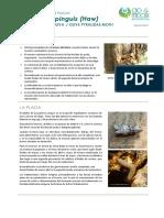FCP Euzophera Pinguis ES Rev01