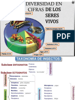 CAP. v Taxonomía de Insectos