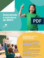 Infografico Entendendo a Estutura Da Bncc