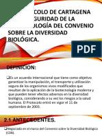 El Protocolo de Cartagena Sobre Seguridad de La