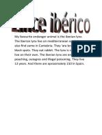 lince iberico